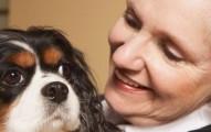 Beneficios de las mascotas en las personas mayores