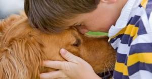 La actividad cerebral de los perros frente a la comunicación humana