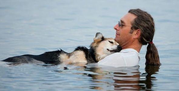 Reflexiones, el alma de las mascotas y nuestra capacidad de amar