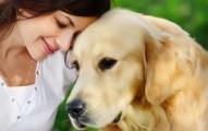 Tener una mascota mejora el alma