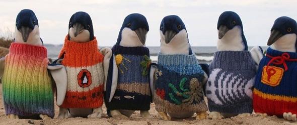 Hombre lleva 80 años tejiendo jerseis para salvar pinguinos