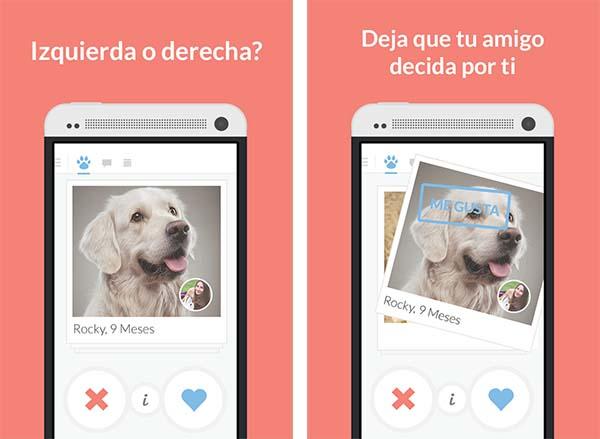 Tindog la aplicación para que tu perro ligue app