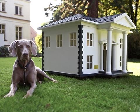 Consejos para construir la primera casa para perros - Casa de perro grande ...