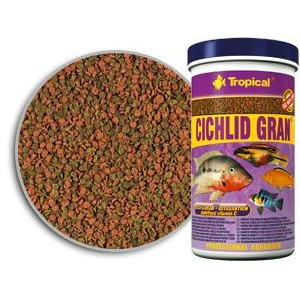 Alimento para tener peces sanos canal mascotas for Comida para peces tropicales acuario
