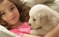 amor-a-las-mascotas-tiempo-de-amistad-con-los-perros_v8hc0