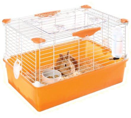 Como cuidar un conejo enano en casa