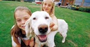 como-hacer-feliz-a-nuestro-perro_t8i9b