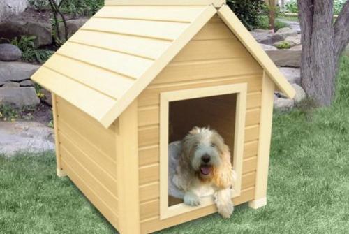 Consejos para comprar las casetas de perros canal mascotas for Casetas para perros bricomart