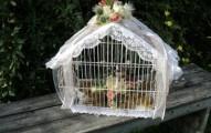 decorando-las-jaulas-de-nuestras-aves_fhnlm
