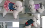 detalles-para-las-prendas-caninas_7fb28