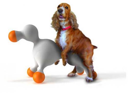 El periodo de celo en las perras