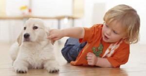 el-perro-ideal-para-un-hogar-con-ninos_furx9