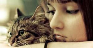 el-tiempo-de-las-caricias-para-el-gato_e0i5d