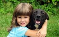 es-el-perro-el-mejor-amigo-de-la-mujer_2xhe6