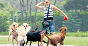 jugar-con-la-mascota-nos-ofrece-mucho-bienestar_4o3km
