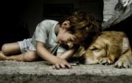 la-educacion-con-amor-dara-justificacion-a-tener-mascotas_mpkst