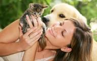 la-medida-correcta-de-amor-por-las-mascotas_vsfco