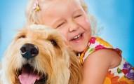 la-verdadera-belleza-de-las-animales-y-mascotas_akgyr