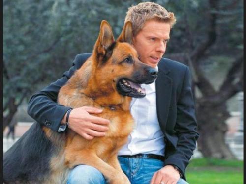 Lo m s importante para tener un perro en casa canal mascotas - Perros para tener en casa ...