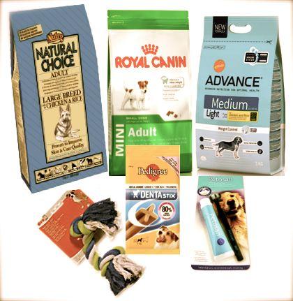 Los mejores productos para la higiene dental de los perros
