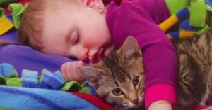los-ninos-con-gatos-de-grandes-no-sufren-de-alergia_vuim1