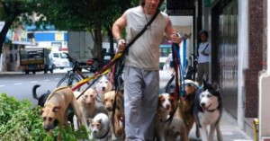 los-perros-encerrados-pueden-sufrir-de-estres_xko7e