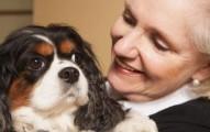 los-perros-son-la-alarma-de-las-personas-mayores_ecyjg