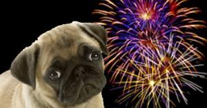 los-perros-y-su-fobia-a-los-fuegos-artificiales_ntah1