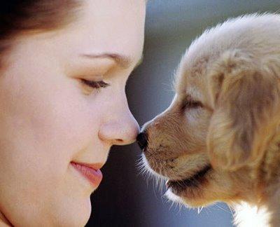 Mascotas y su beneficio para la conciencia humana