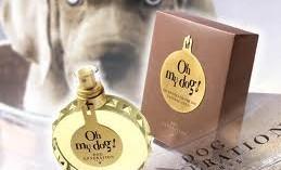 oh-my-dog-la-nueva-fragancia-para-perros_vfeoq