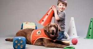 perros-guia-para-ninos-sordos_0draf