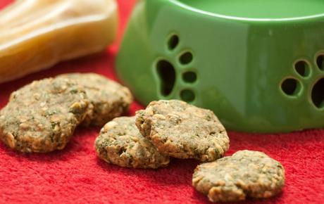Preparando galletas caseras para tu perro