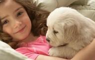 recupera-tu-humanidad-adoptando-animales_ckwix
