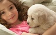 reflexion-sobre-el-amor-por-las-mascotas_r8dj7