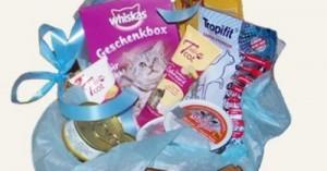 regalos-navidenos-para-gatos_nidmc