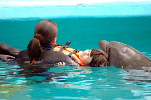 Terapia con delfines