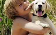 tips-para-que-los-perros-no-muerdan-a-los-ninos_cux0g
