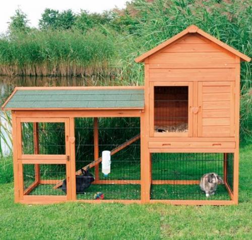 Una casa para el conejo mascota canal mascotas - La casa de la mascota ...
