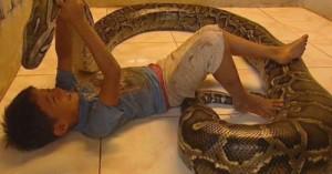 una-serpiente-en-casa_r1wae