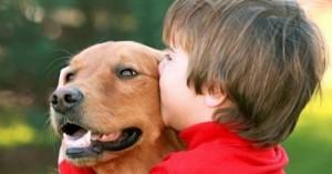 zooterapias-con-perros-mejorar-vida-de-los-ninos-autistas_hkoa1